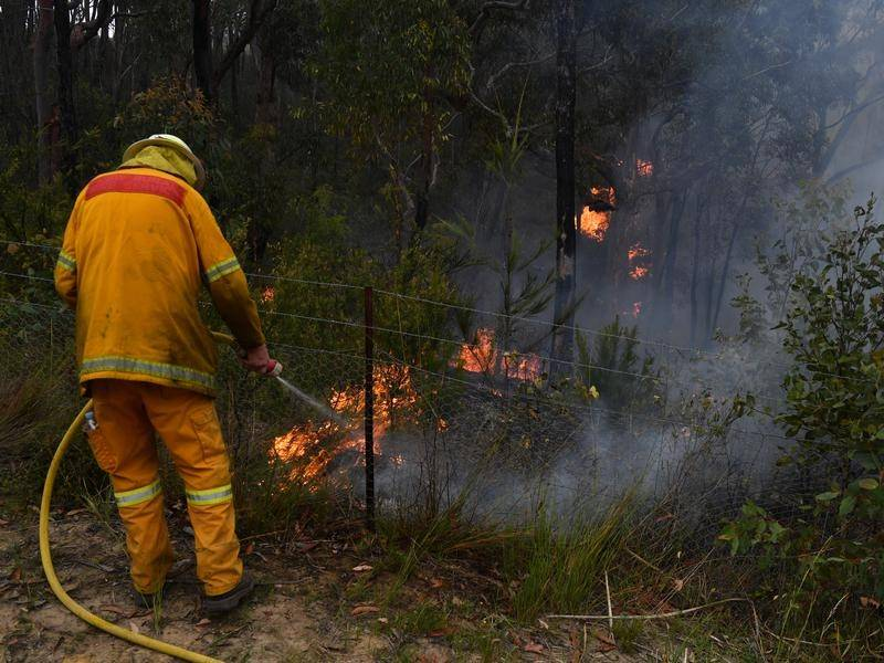 Backburning will play a big part in limiting the effect of bushfires this summer. Image: File.