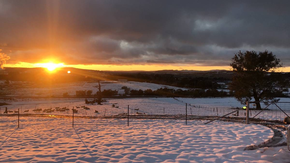 WINTER WEATHER: Oberon was one of the places in the region to receive snowfall during August. Photo: SAM BATTLE